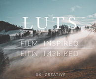 Professional Film Inspired LUTS