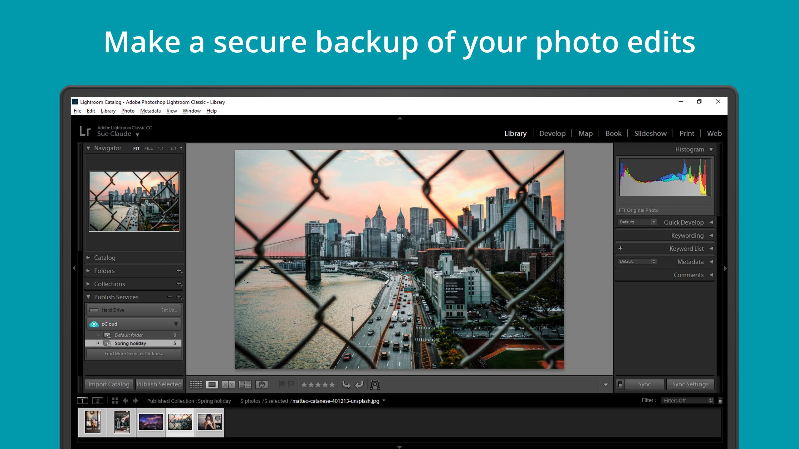 Image result for Adobe Lightroom:
